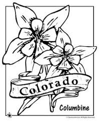 5 superb flower coloring page ngbasic com