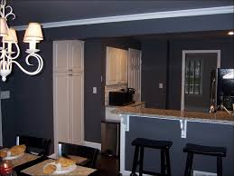 kitchen new kitchen cabinets plywood kitchen cabinets hickory