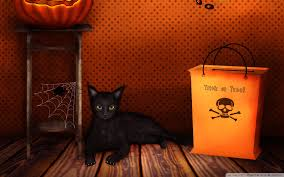 black cat halloween wallpaper halloween trick or treat hd desktop wallpaper high definition