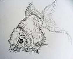 drawn artwork fish pencil and in color drawn artwork fish