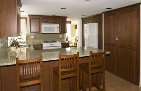 Wholesale Kitchen Cabinets Home Decorators Collection Kitchen Cabinets Reviews 100 Home