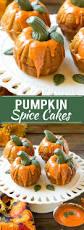 best thanksgiving speech 119 best best thanksgiving day ideas images on pinterest