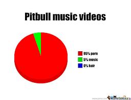 Music Video Meme - pitbull music videos by dewbuster meme center