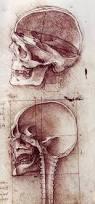 Anatomy Of A Cats Eye The Drawings Of Leonardo Da Vinci
