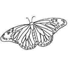 50 free printable butterfly coloring pages