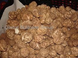 where to buy truffles online fresh truffles black white products malaysia fresh truffles