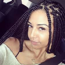 hairstyles to do with plaited extensions 8 best braids images on pinterest braid hair protective