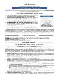 software exles for resume pleasing it developer resume exles for your summary software of