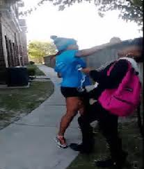 Sharkeisha Meme - the daily what meme daily trending internet culture daily dose