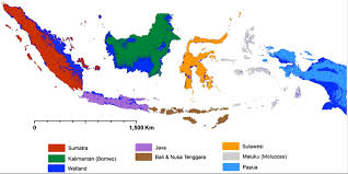 pacific region map wetlands mapping support for pacific region glad