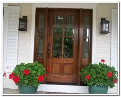 Exterior Door With Frame Doors Interesting Wood Exterior Doors With Glass Outstanding