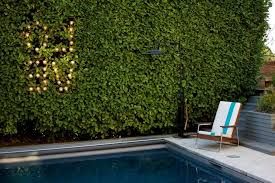 Vine Chair Vine Covered Wall Landscape Modern With Retro Modern Outdoor Wall