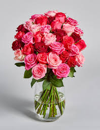 Red Rose Bouquet Roses Red Pink White Rose Flowers U0026 Bouquets M U0026s