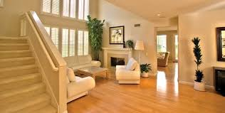 residential wood floor cleaning blue green floor care