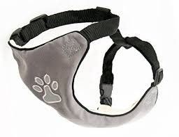 Comfortable Strap On Harness 241 Best Dog Harness Images On Pinterest Pet Products Dog
