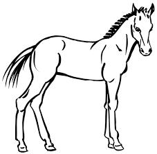 coloriage à imprimer un cheval dessin 7