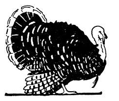 thanksgiving clip vintage turkey illustration black and white