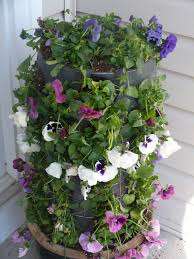 gardening pots u2014 marifarthing blog the flower tower home depot