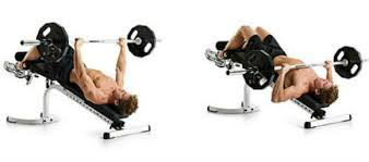 Dumbbell Bench Press Form Decline Bench Press How To U0026 Common Mistakes