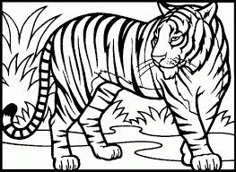coloring page tigers free tiger coloring pages 11095