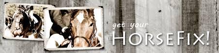 Horse Themed Home Decor Horsefix Com Equestrian Horse Themed Home Decor
