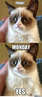Friday Cat Meme - grumpy cat loves mondays by superfred3 meme center