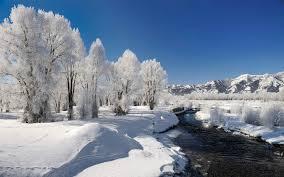 garden design garden design with still winter u landscape colleen