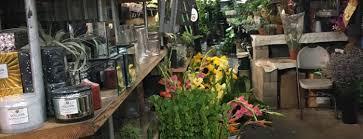 flower shops in the 15 best flower shops in