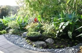 Small Tropical Garden Ideas Tropical Garden Plans Attractive Backyard Tropical Landscaping