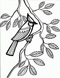 download coloring pages coloring pages of birds coloring pages