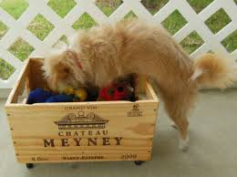 Make Your Own Toy Chest by 15 Fun Ways To Store Your Pup U0027s Stuff Barkpost