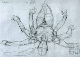 Female Body Anatomy Drawing 207 Best Pose Sketches Images On Pinterest Drawing Drawing