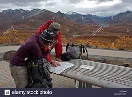 Denali National Park Map Trekkers Reading A Map Denali National Park Alaska Usa Stock