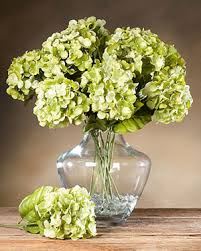 silk hydrangea buy silk hydrangea flower stems at petals