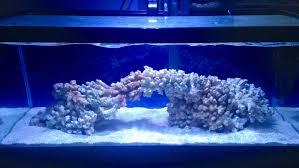 Nano Aquascaping Aquascaping A Long Tank Aquascaping Forum Nano Reef Com Community