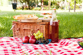 Best Picnic Basket Furnitures Willow Picnic Basket Wine Picnic Basket Picnic