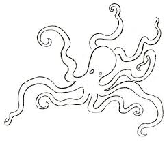 how to draw octopus drawing tutorials u0026 drawing u0026 how to draw