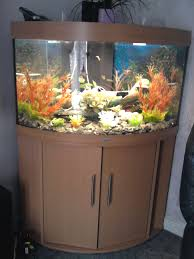 aquarist classifieds kent fishkeeping adverts by county
