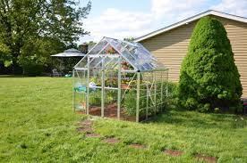 Greenhouse 8x8 Amazon Com Palram Snap U0026 Grow 8 U0027 Series Hobby Greenhouse 8 X 8