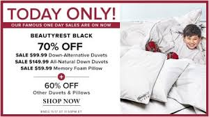 The Bay Duvets Thebay Com Today Only 70 Off Beautyrest Duvets Nov 17