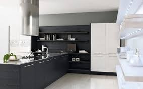 Kitchen Cabinets Modern Furniture Really Modern Kitchen Cabinets Ideas Black Wooden