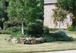 landscape stones around trees how to create nice landscape