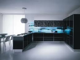 Black And White Kitchen Interior by Appealing Contemporary Kitchen Design With Purple And White