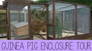 Guinea Pig Hutches And Runs For Sale Guinea Pig Enclosure Tour February 2015 Youtube