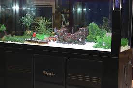 titanic wreckage ship cruises 38cm aquarium fish tank