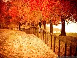 Beautiful Wallpapers Beautiful Autumn Wallpapers 2 Seasonal Crazy Frankenstein