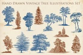 64 vintage trees objects creative market