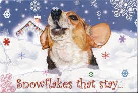 beagle christmas cards beagle holiday cards beagle christmas