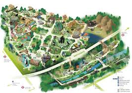 Islands Of Adventure Map Map Of Zsl London Zoo Zoological Society Of London Zsl