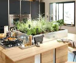 plante cuisine plante aromatique cuisine cuisine pot plante aromatique cuisine
